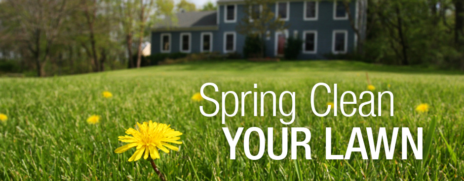 Lawn care for spring