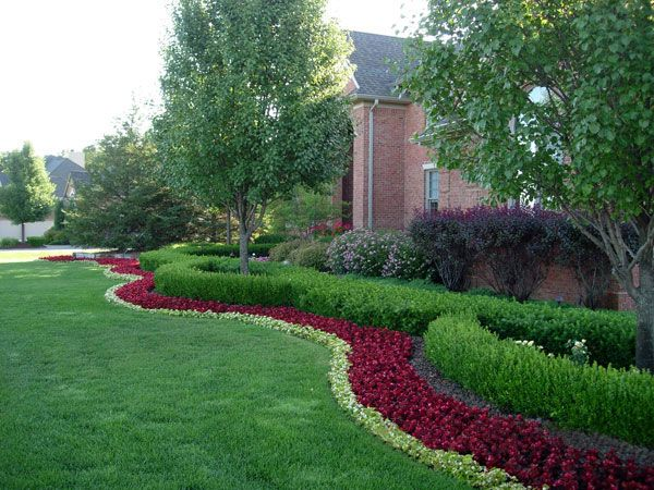 Boxwood landscaping omaha landscaping company arbor for Slow growing trees for front yard