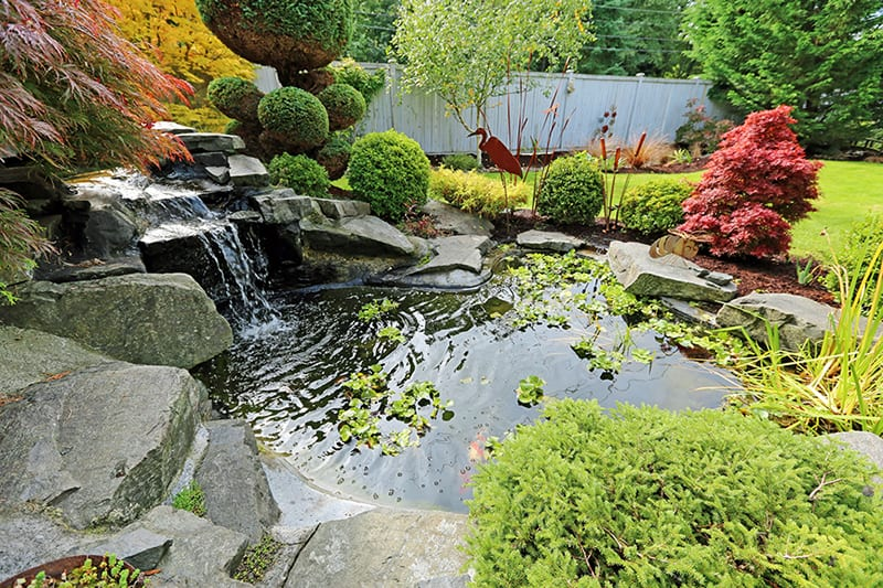 Water feature landscaping designs arbor hills trees for Garden designs with water features