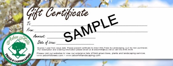 Sample Gift Certificates