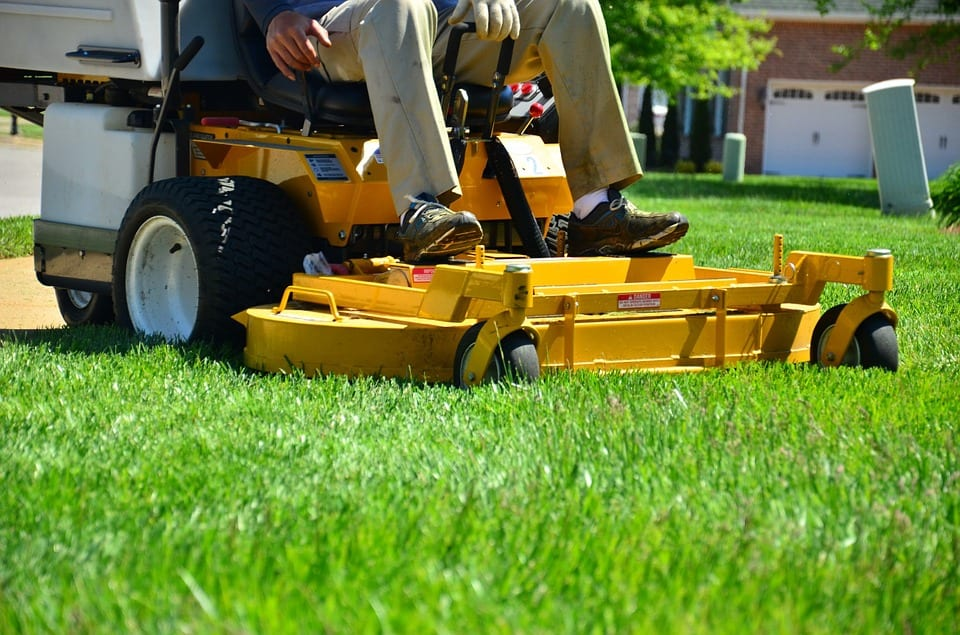 Organic Lawn Care Is Catching On
