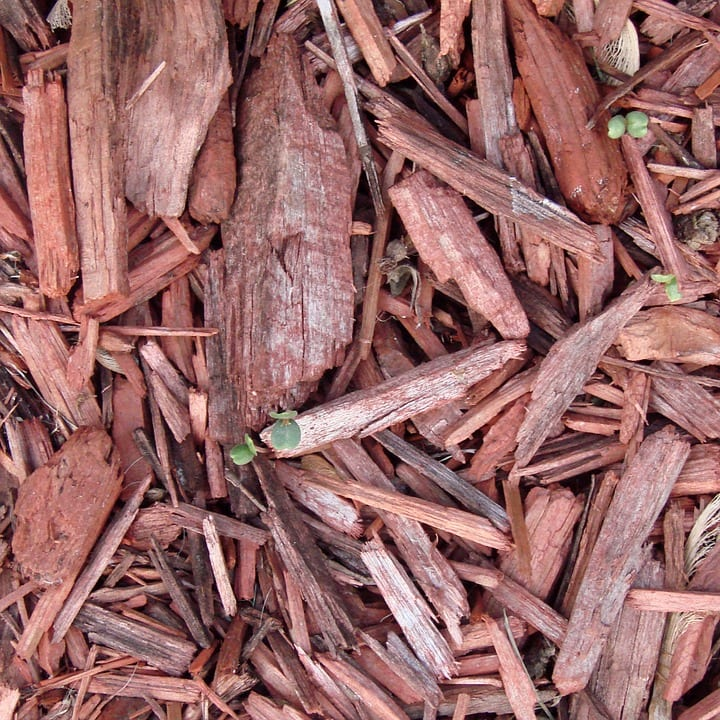 Best Time to Mulch & Importance of Mulching