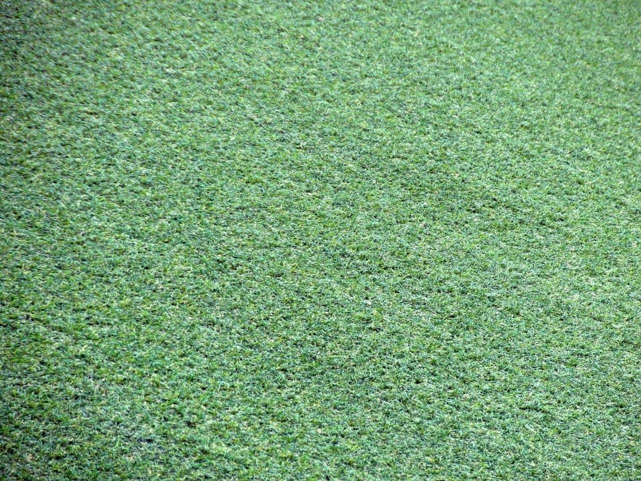 Artificial Grass Landscaping