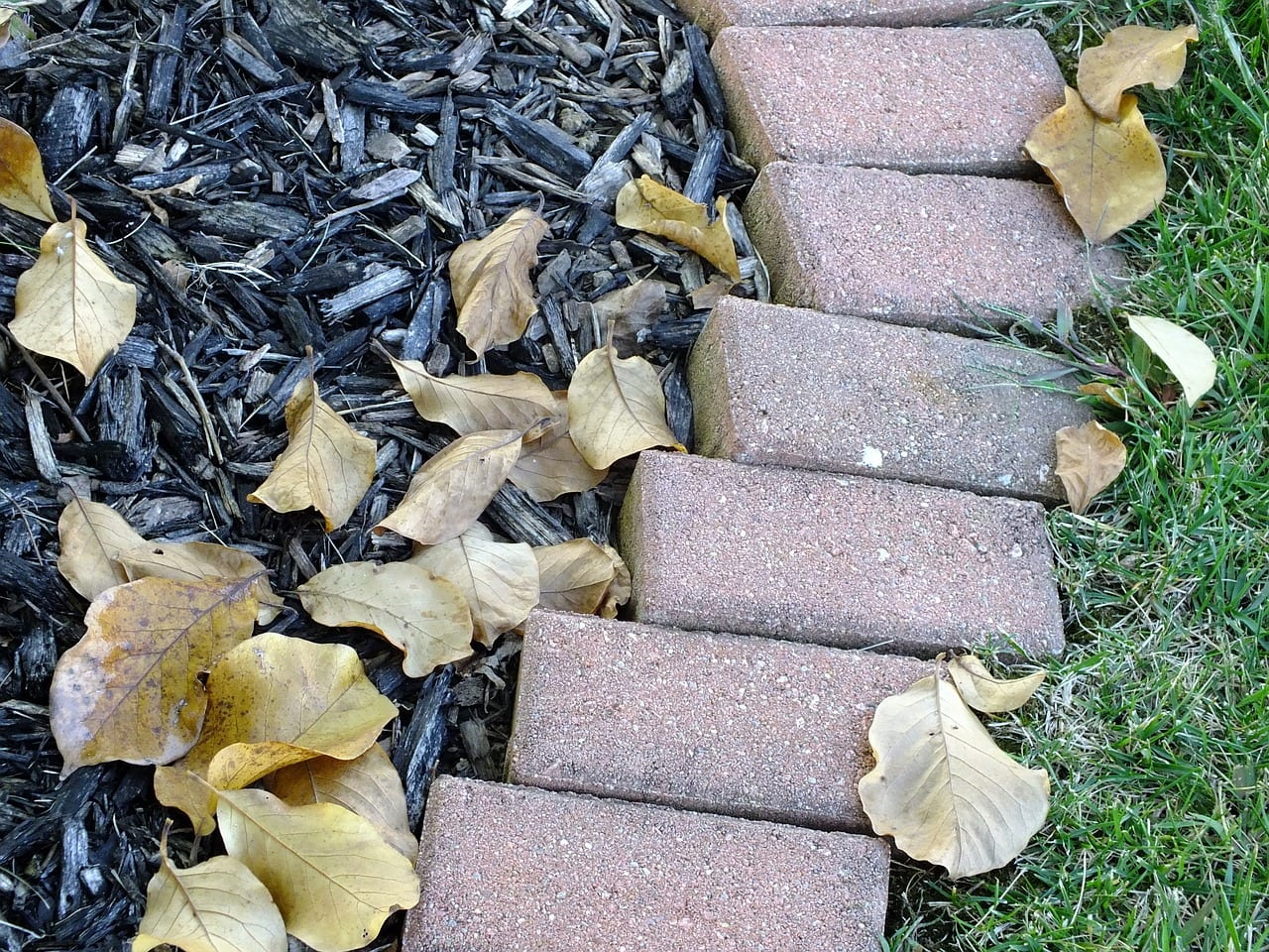 Fall landscaping tips in Omaha