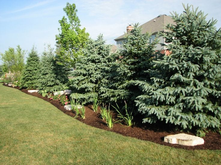 Outdoor Landscaping Privacy in Omaha